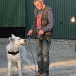 Suchhund - Pettrailer 1
