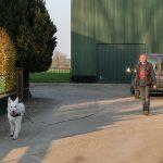 Suchhund - Pettrailer 4