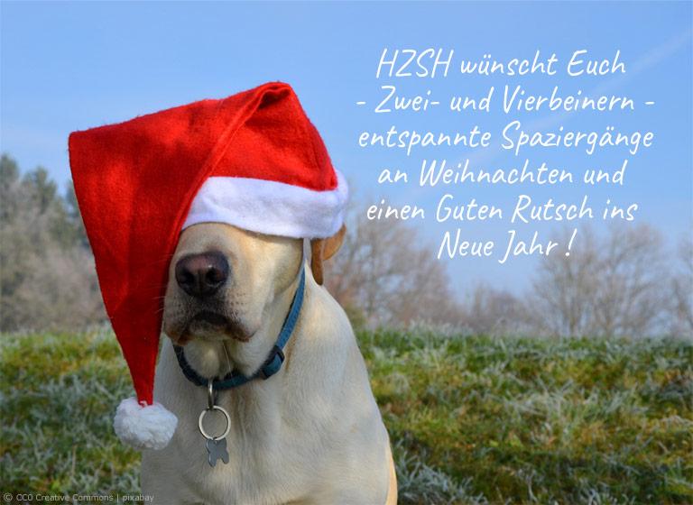 HZSH - Hundezentrum Schleswig-Holstein wünscht Euch entspannte Weihnachten und Guten Rutsch ins Neue Jahr
